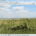 تحميل برنامج Imagine لعرض الصور